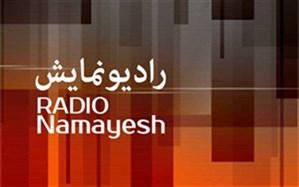 پخش گزارش تصویری همزمان در رادیو نمای رادیو نمایش