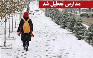 کلیه مدارس استان زنجان تعطیل شد