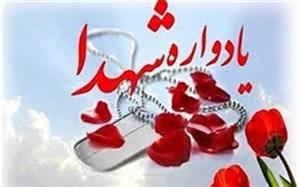 اجلاسیه شهدای شبکه بهداشت و درمان استان سمنان برگزار شد