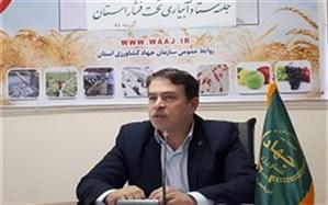 63هزار و ۴۳۸ هزارهکتار از اراضی کشاورزی آذربایجان غربی به سیستمهای آبیاری نوین تجهیز شد