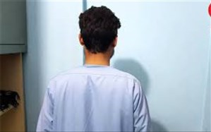 پشت پرده داستان سراییهای دانشجوی پولداری که دزد شد