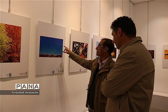 برگزاری نمایشگاه  عصر پاییزی در شیراز