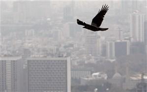 آلودگی هوا در 3 نقطه تهران به مرحله اضطرار رسید
