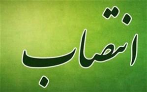 انتصاب محمد رضایی به عنوان مدیرعامل بیمه ایران