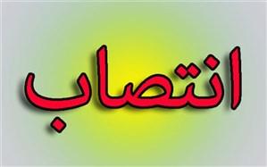 سرپرست معاونت پژوهشی ، برنامه ریزی و نیروی انسانی  آموزش و پرورش استان بوشهر منصوب شد