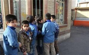 مدیرکل دفتر تغذیه وزارت بهداشت اعلام کرد: تغییر در دستورالعمل بوفه مدارس
