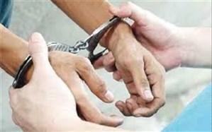 زورگیران اغتشاشگر در شهرستان  ساوجبلاغ دستگیر شدند