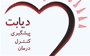 اولین نشست تخصصی باشگاه های «حامی پیشگیری از دیابت» در یزد برگزار شد