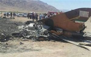 تعداد دقیق مسافران و خدمه هواپیمای سقوط کرده اوکراینی مشخص شد