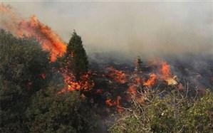 تلاش ۷۰۰ نیروی یگان حفاظت برای اطفای حریق جنگل