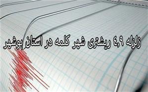 زلزله ۴.۹ریشتری  بوشهر را لرزاند