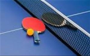نایب رییس فدراسیون: گسترش تنیس روی میز در رده سنی پایه آغاز شود