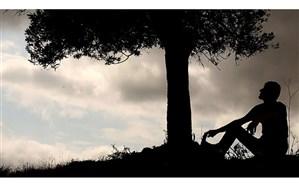 مجید برزگر: مستند «درخت زندگی» یادآور عباس کیارستمی  است