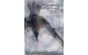پوستر«پرواز عمود کبوتر دریایی دودی بر فراز آبهای سرد و معتدل اقیانوس اطلس» رونمایی شد