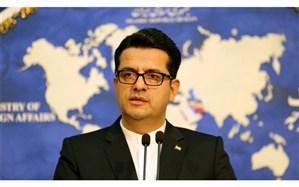 عباس موسوی: کارگروه ویژه رسیدگی به مسائل کنسولی جانباختگان حادثه هوایی اخیر تشکیل شد