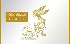 نگاهی به 10 فیلم بخش «نگاه نو» در جشنواره فجر 38