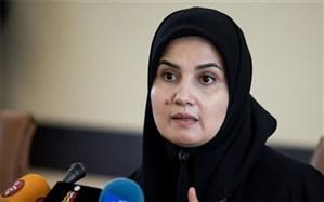 آغاز بررسی لایحه «صیانت، کرامت و تأمین امنیت بانوان در برابر خشونت» در دولت