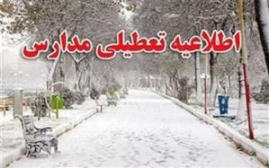 تعطیلی مراکز پیش دبستانی و مدارس ابتدایی فیروزکوه