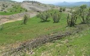 رفع تصرف اراضی ملی به ارزش 8 میلیارد ریال در مُهر