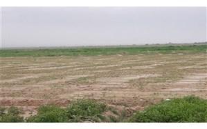پرداخت سه میلیارد و نهصد میلیون ریال غرامت سیل به کشاورزان و دامداران  فیروزه