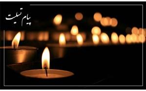 پیام تسلیت وزیر آموزش و پرورش در پی درگذشت تعدادی از هموطنان در کرمان و سقوط هواپیما
