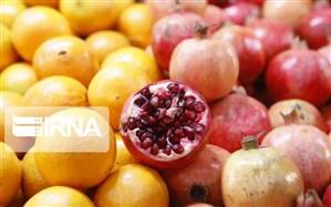 سالانه بیش از ۸۰ تن کنسانتره و آبمیوه در خوی تولید میشود