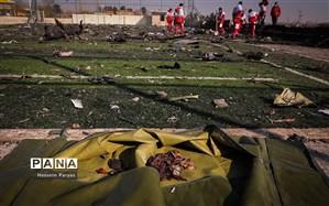 دستور رهبر انقلاب بعد از اطلاع از بروز خطای انسانی در سقوط هواپیمای اوکراینی به روایت فارس