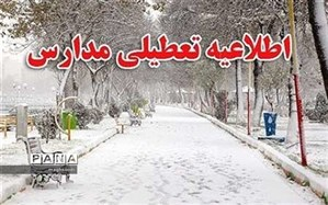 بارش برف موجب تعطیلی بسیاری از مدارس فارس شد