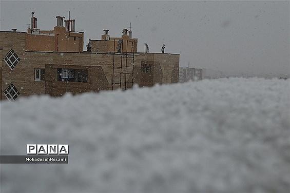 بارش برف در بیرجند