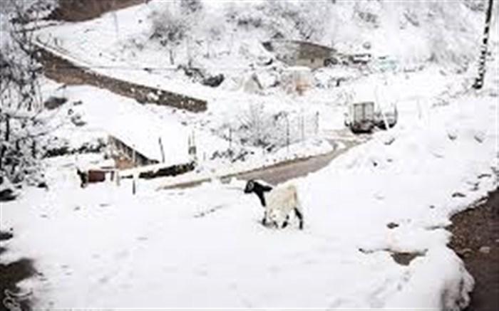 ۵۰ روستای بخش رحیم آباد - رودسر در محاصره برف