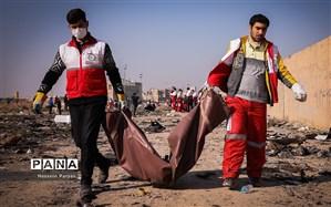 123 نفر از قربانیان سقوط هواپیمای اوکراینی شناسایی شدند