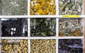 احداث اولین شهرک صنعتی غیردولتی گیاهان دارویی در استان اردبیل