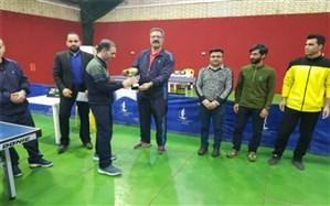 تیم های برتر مسابقات تنیس روی میز پسر منطقه11کشوردر بوشهر مشخص شدند