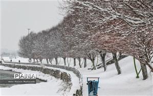 استقرار ۲۲۲ دستگاه ماشین آلات خدمات شهری در سایتهای برف روبی مناطق ۲۲ گانه