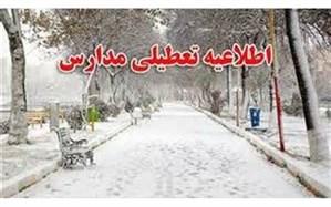 برف، مدارس برخی مناطق خراسان شمالی را تعطیل کرد