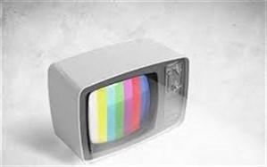 شعرای نامی ایرانی در قاب تلویزیون