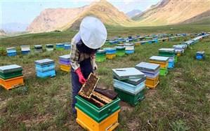 نیش زنبورداران بر تن محیط زیست