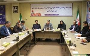 فرماندار اسلامشهر:درشرایط تحریم می بایست برخی بروکراسیهای اداری که سدراه فعالیت کارگاهها و مراکز تولیدی هستندرااز بین برداشت