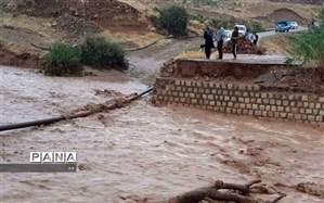 راه ارتباطی ۲ روستای زیودار پلدختر قطع شد
