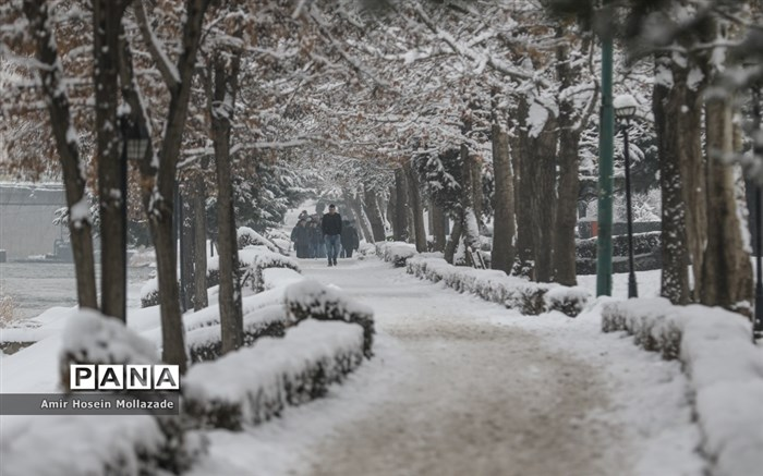احتمال قطعی گاز و برق در قزوین؛ مردم صرفه جویی کنند
