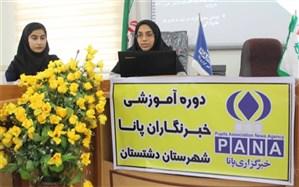 کارگاه آموزش خبرنگاری و خبرنویسی  ویژه خبرنگاران پانا در دشتستان برگزار شد