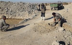احیاء پوشش گیاهی تالاب هامون با هدایت آب به کانون های گرد و غبارسیستان
