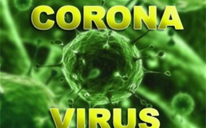 ویروس