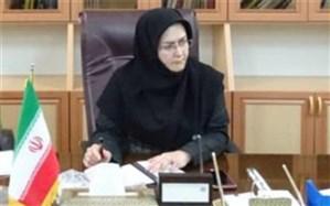 سرپرست معاونت هماهنگی اموراقتصادی استانداری: ایجاد ایستگاههای ثابت توزیع کپسول گاز در استان
