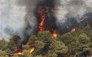 40 هکتار از اراضی جنگلی نی ریز در آتش بی احتیاطی سوخت