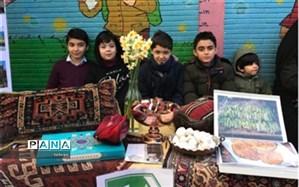 """به مناسبت ایام الله دهه فجر: نمایشگاه"""" ایران من"""" در منطقه 7"""
