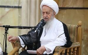 آیتالله مکارم شیرازی: با وجود مشکلات،  قهر با صندوق رای و عدم حضور در راهپیمایی 22 بهمن عاقلانه نیست