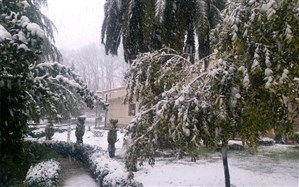 بارش نخستین برف زمستانی در جلگههای گیلان