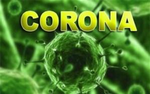 درباره ویروس کرونا بیشتر بدانیم