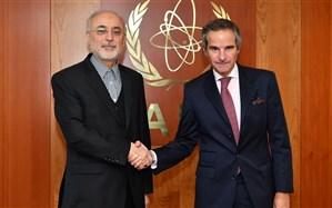 صالحی: ایران اهل مذاکره و منطق است